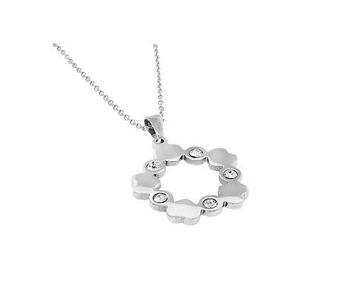 Polaskia, edelstalen hanger met ketting - Montebello juwelen-0