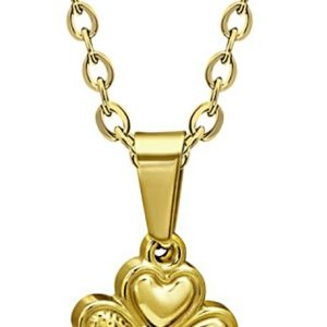 Amanto ketting Camon Gold - Dames - 316L Staal - Klaver - ∅15 mm - 45 cm-0