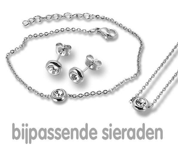 Amanto Oorbellen Ember - Dames - 316L Staal PVD - Zirkonia - Rond - ∅6 mm-21832