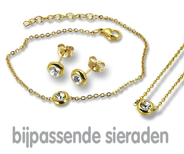 Amanto Ketting Ember Gold - 316L Staal PVD - ∅6mm - 48+5cm-21865