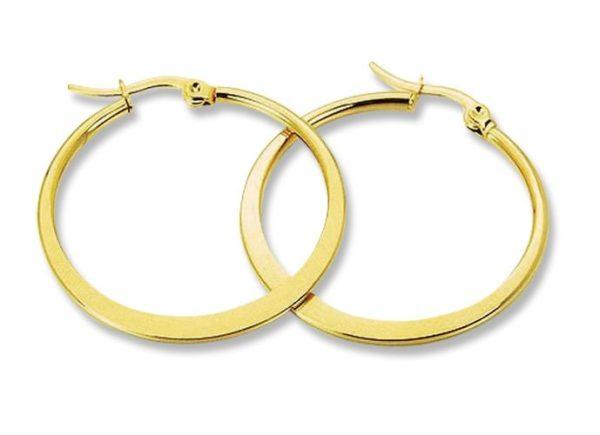 Amanto Oorbellen Geeke Gold - Dames - 316L Staal Goudkleurig PVD - 2 mm - ∅34 mm-0